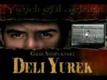 "Online epizode serije ""Ludo Srce - Deli Yürek"""