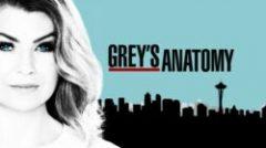 "Online epizode serije ""Greys Anatomy"""
